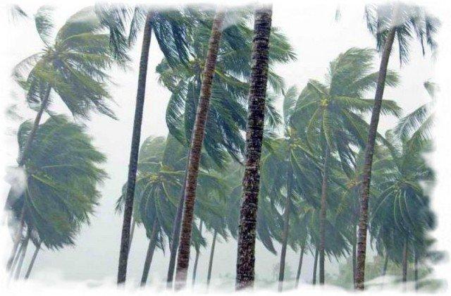 Сезон дождей в Таиланде фото 1