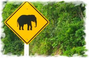 Дорожное движение в Таиланде