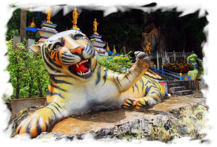 Храм Тигра в Краби: чем интересен и как добраться