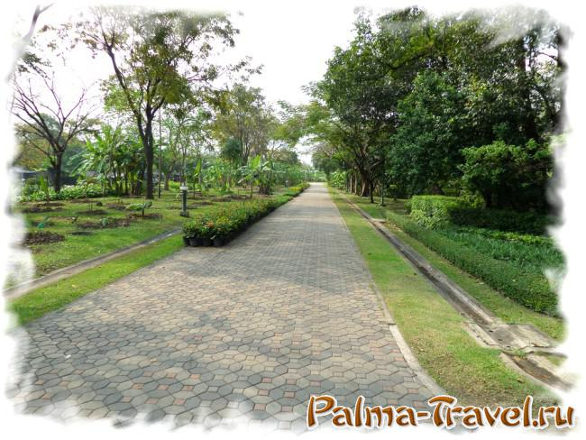 Queen Sirikit Park in Bangkok. Left - the garden of banana trees.