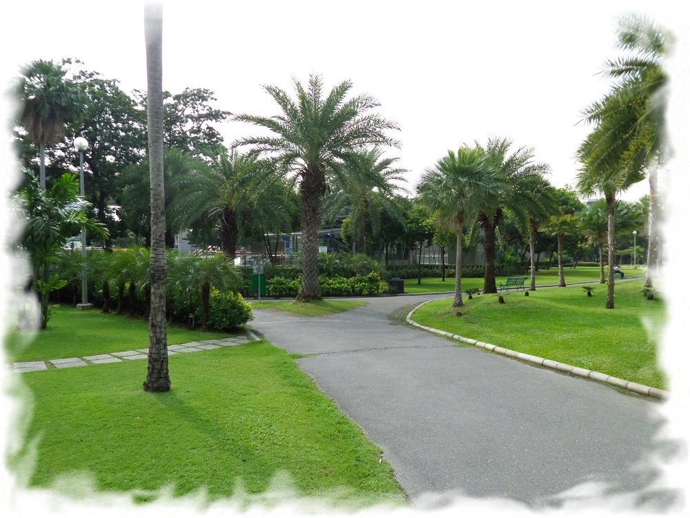 Chatuchak Park - green oasis in the north of Bangkok