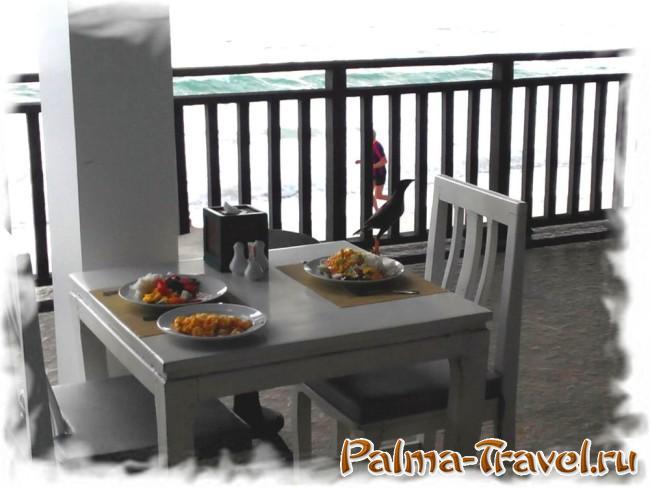 Chaweng Cove beach Resort   -ресторан на берегу моря