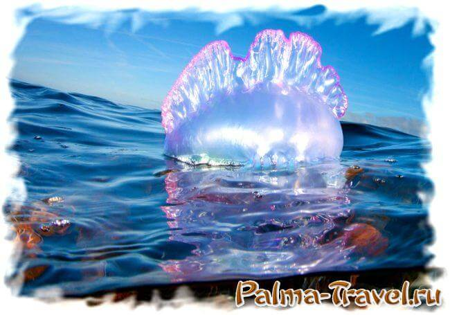 portugalskie-korabliki-na-plyazhah-phuketa-3