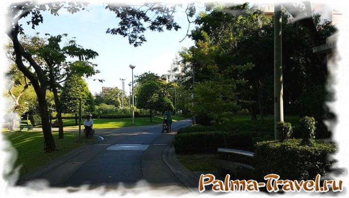 В утренние часы в парке много тени и не слишком жарко