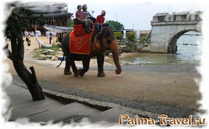 На территории Храма Истины можно покататься на слоне и лошадях